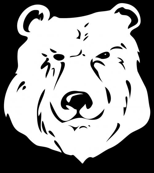 bear face head