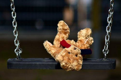 bear  furry teddy bear  teddy bear