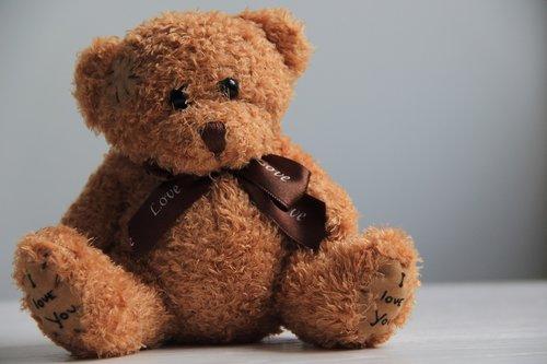 bear  toy  child