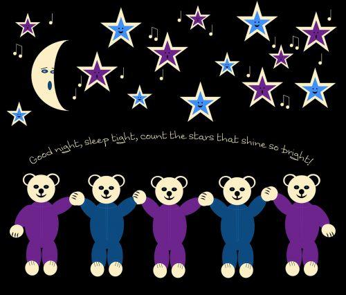 bear teddy night