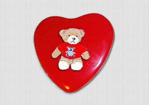 bear heart box love