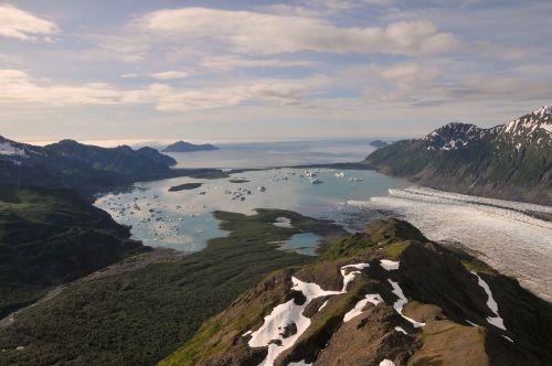 bear glacier landscape ocean