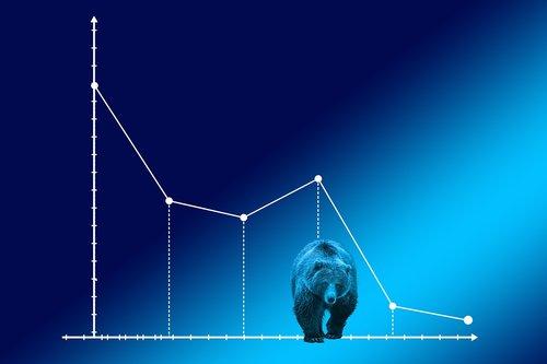 bear market  courses  stock exchange