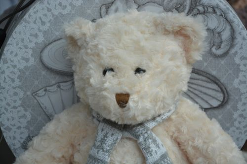 bear plush doudou hug