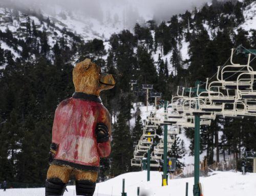 Bear Sculpture On Ski Slopes