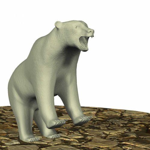 Bear Standing