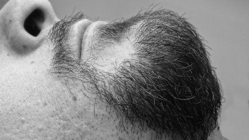 barzda,veidas,pailginti,juoda,juoda ir balta,balta,detalės