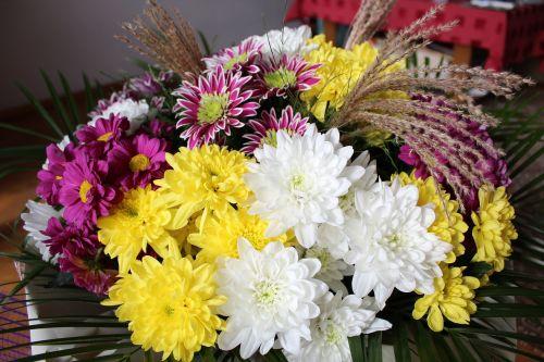 beautiful,cheerful,flowers