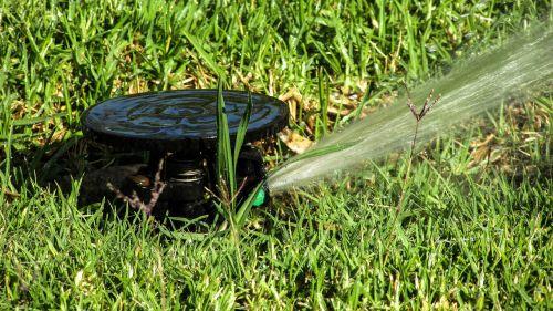 beck water watering