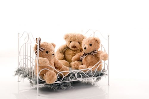 bed crib bears
