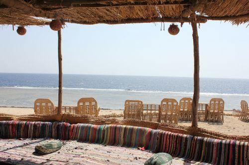 bedouin bar cozy
