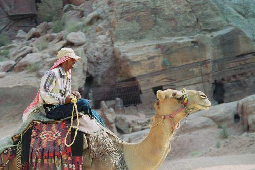 bedouin dromedary petra