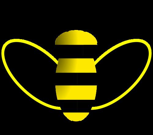 bee honeybee sting