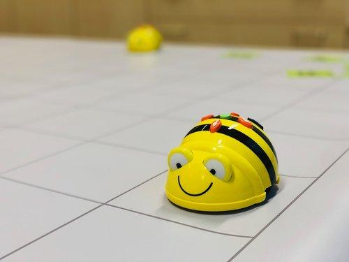 beebot  bee  robot