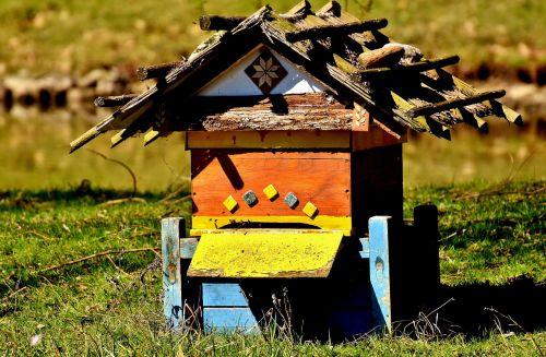 beehive bees wood