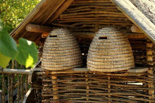 beehive bees beehives