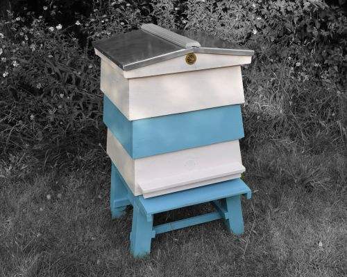 beehive wbc hive