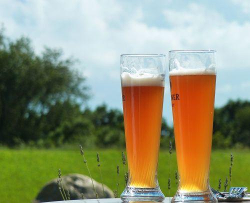 beer refreshment wheat beer