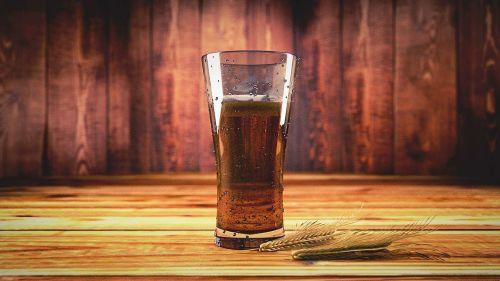 beer tipple drink