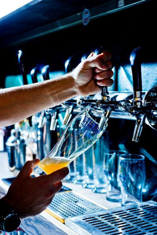 beer bar rest