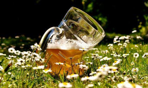 alus,alaus stiklo,deformuotas,sulenktas,juokinga,alaus sodas,lengvasis alus,bavarija,alaus darykla,gerti,troškulys,stiklo puodelis,atsipalaidavimas,alaus puodelis,butelis,alaus gėrimas,troškulio gesintuvas,stiklas,prost,skanus,Bavarian,puodelis,kvieciai,kvietinių alų,jaukus,trueb,skystas,pirštas,sat,alaus puodeliai,stalas