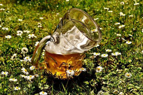 alus,alaus stiklo,deformuotas,sulenktas,juokinga,alaus sodas,lengvasis alus,bavarija,alaus darykla,gerti,troškulys,stiklo puodelis,atsipalaidavimas,alaus puodelis,butelis,alaus gėrimas,troškulio gesintuvas,stiklas,prost,skanus,Bavarian,puodelis,kvieciai,kvietinių alų,jaukus,trueb,skystas,pirštas,sat,alaus puodeliai