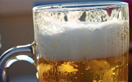 beer beer tankard beer glass