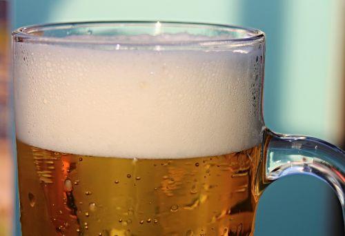 beer beer tankard beer glass