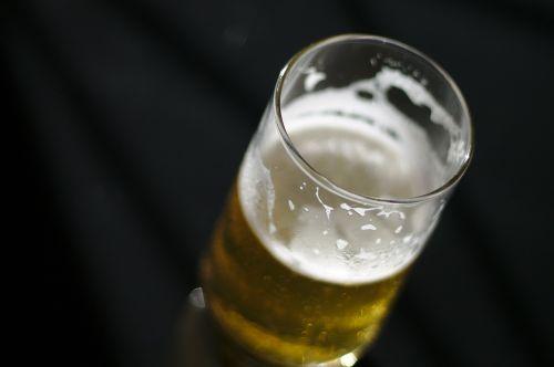 beer drink brahma