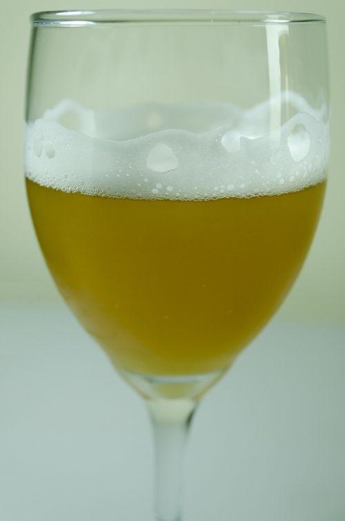 beer drink refreshing