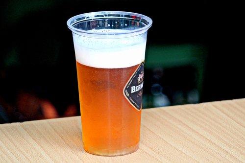 beer  bernard  cup