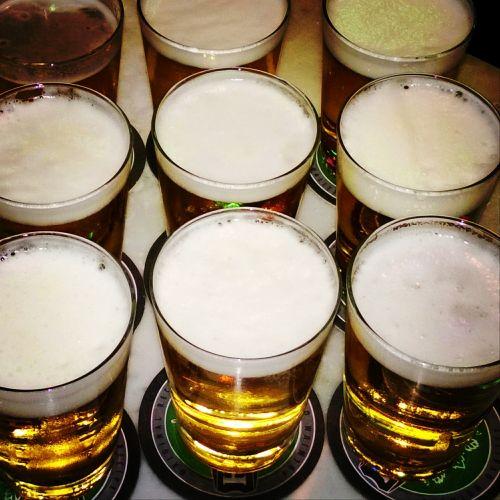 alus,stiklas,šaltas,gėrimas,alkoholis,gerti,puodelis,baras,baras,alaus darykla,skystas,ale,geltona