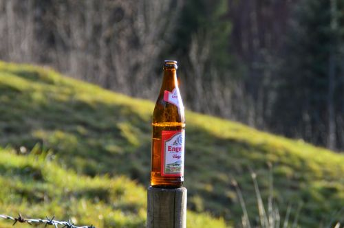 beer beer bottle engelbraeu