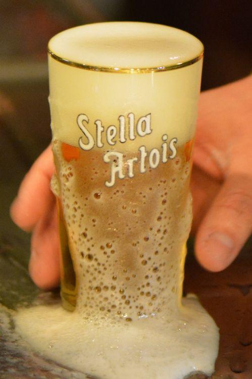 beer stella artois drink