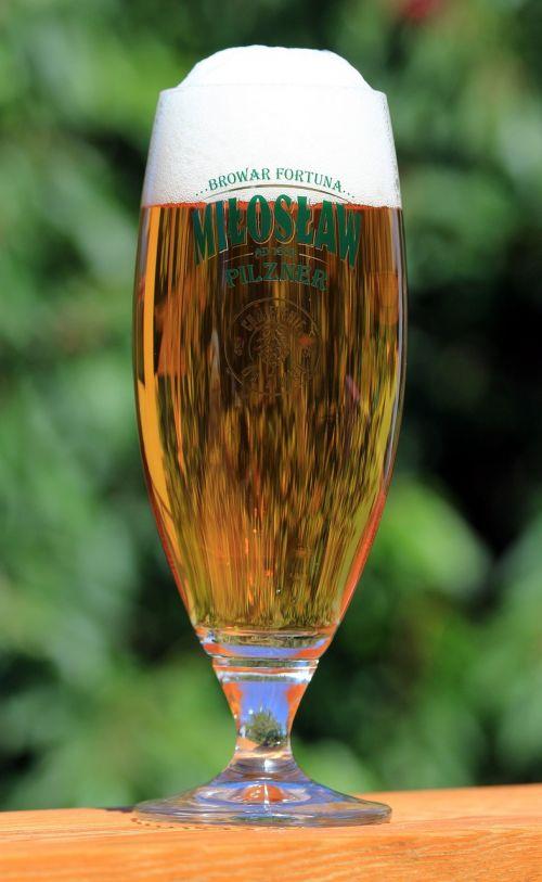 beer pokal glass