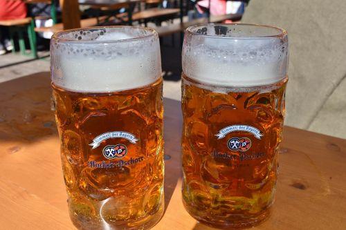 beer beer mug sat