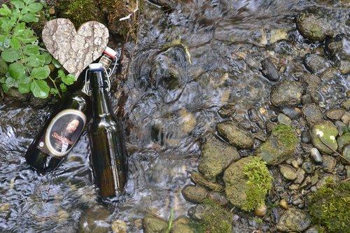 beer bottle  beer  bach