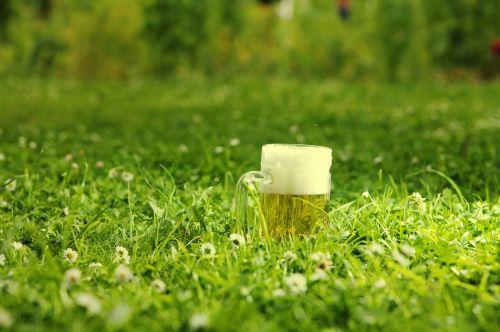 alaus puodelis,pieva,gerti žalios spalvos,gėlės,festivalis,oktoberfest,bavarija,šviesa,žalias,putos,alus,gerti