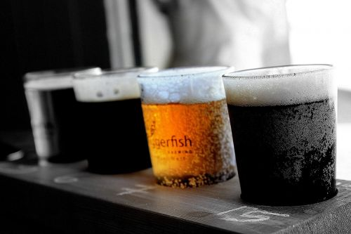 beers glasses of beer drink