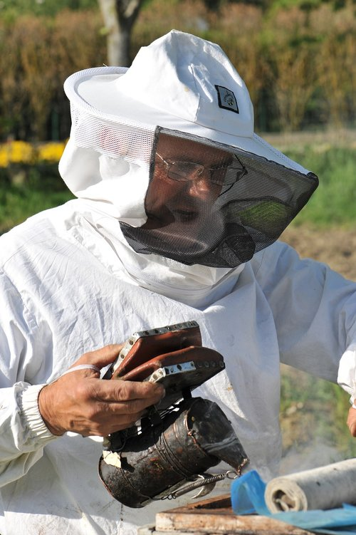 bees  beekeeper  honey