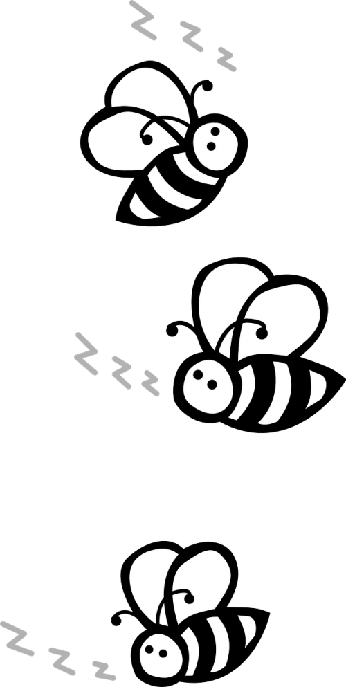 bees flying black and white