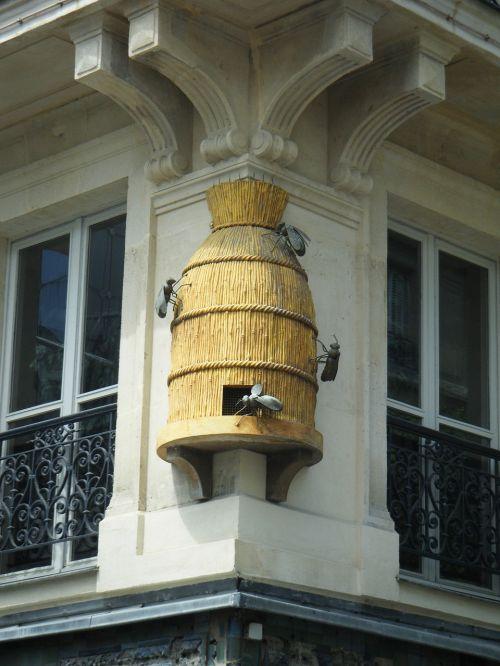 bees honey beekeeping
