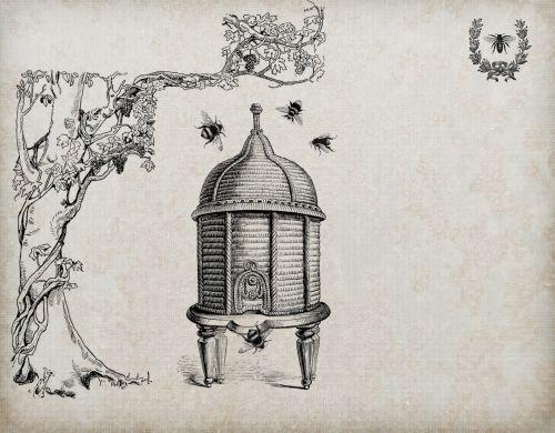 Bees, Beehive Vintage Background