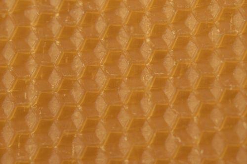 beeswax combs honeycomb