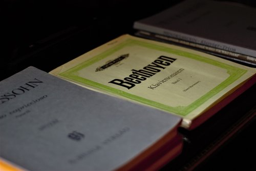 beethoven  lyrics  music lessons