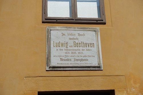 beethoven  house  swim