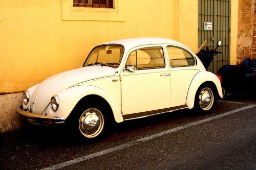 beetle oldtimer volkswagen
