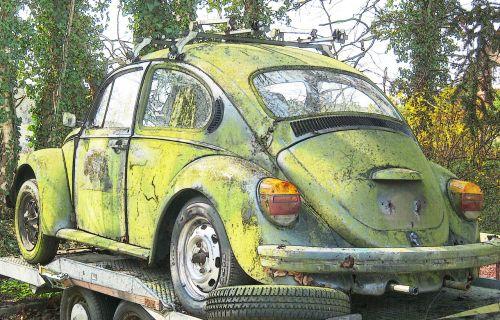 beetle vw vw beetle