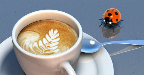 beetle coffee cup