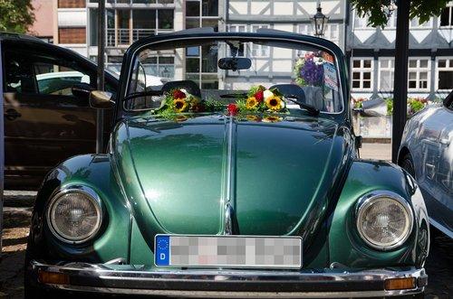 beetle  auto  oldtimer